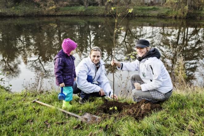 A fost încheiat cu succes proiectul pentru mediu din 2013, ŠKODA plantează câte un copac